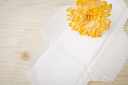 女性ホルモン 生理 生理痛 ナプキン